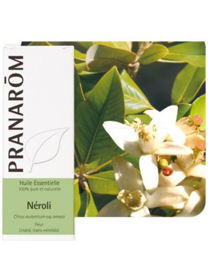 Néroli - Huile essentielle Citrus aurantium ssp amara 2 ml - Pranarôm