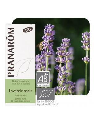 Lavande aspic Bio - Lavandula latifolia 10 ml - Pranarôm
