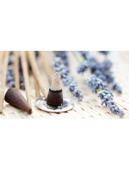 Cannelle encens indien - 12 cônes - Les Encens du Monde