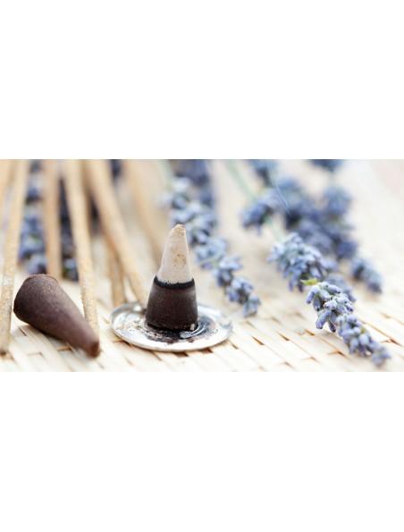 Oliban encens indien - Relaxant 12 cônes - Les Encens du Monde
