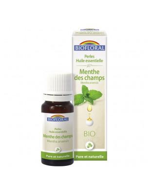 Menthe des champs Bio - Perles d'huiles essentielles 20 ml - Biofloral