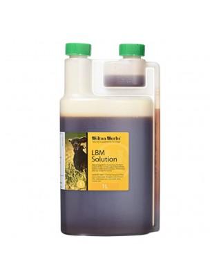 LBM solution - Incontinence des  Chiens 1 Litre - Hilton Herbs