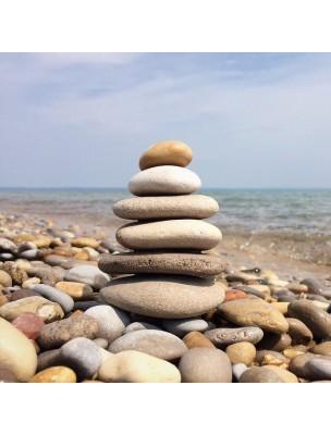 https://www.louis-herboristerie.com/43293-home_default/b-complex-stress-formula-stress-et-fatigue-90-comprimes-solgar.jpg
