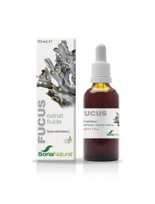 Fucus XXI - Extrait Fluide de Fucus vesiculosus L. 50ml - SoriaNatural