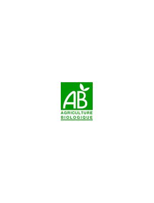Thé vert Matcha Ginseng Bio - Thé vert 20 sachets - Pukka Herbs