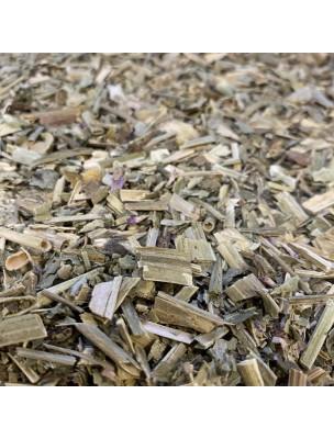 Scabieuse des Champs Bio - Partie aérienne coupée 100 g - Tisane de Scabiosa arvensis
