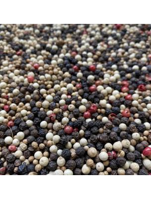 Mélange 4 Baies Bio - Grains 100g - Epices