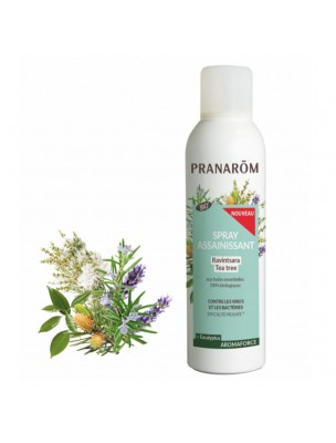 Aromaforce Spray Assainissant - Ravintsara Tea Tree 150 ml - Pranarôm