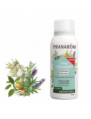 Aromaforce Spray Assainissant - Ravintsara Tea Tree 75 ml - Pranarôm
