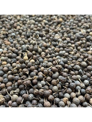 Cubèbe - Fruit 100g - Tisane de Piper cubeba