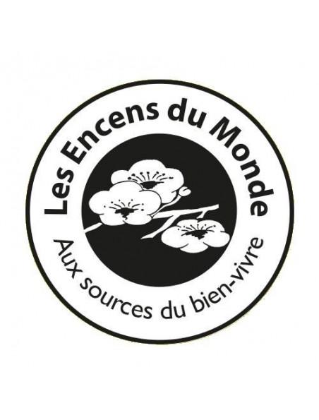 Porte-encens en pierre Ikône noir pour bâtonnets et cônes d'encens - Les Encens du Monde