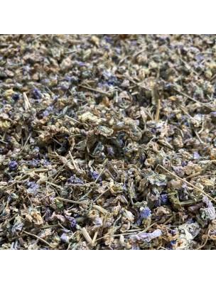 Image de Violette - Sommité fleurie 50g - Tisane de Viola odorata depuis ▷ Réglisse en bâtons Bio - 200 grammes - Glycyrrhiza glabra