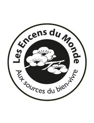 Photophore Geofleur pour résines et huiles essentielles - Les Encens du Monde®