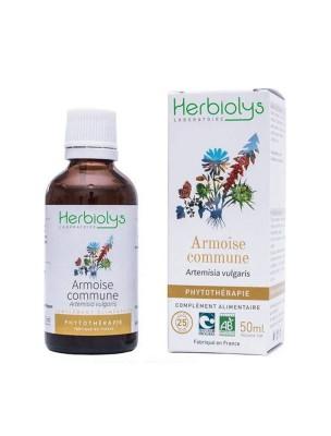 Armoise commune - Digestion et Troubles féminins Teinture-mère Artemisia vulgaris 50 ml - Herbiolys