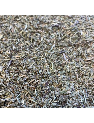 Image de Herniaire - Partie aérienne coupée 100g - Tisane de Herniaria glabra depuis ▷ Ail des ours Bio - Circulation Teinture-mère d'Allium ursinum 50