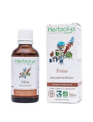 Frêne élevé Macérât de bourgeon Bio - Articulations et Minceur 50 ml - Herbiolys