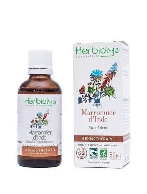 Marronnier d'inde Macérât de bourgeon Bio - Circulation et Hémorroïdes 50 ml - Herbiolys