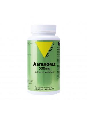 Astragale 500 mg - Défenses naturelles 60 gélules végétales - Vit'all+