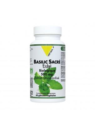 Basilic sacré Tulsi 500 mg Bio - Défenses naturelles et Respiration 60 gélules végétales - Vit'all+