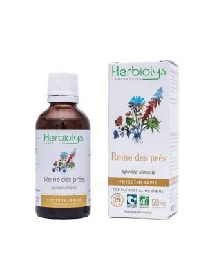 Reine des Prés Bio - Dépuratif et Articulations Teinture-mère Spiraea ulmaria 50 ml - Herbiolys