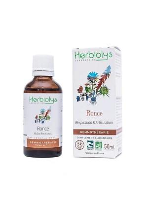 Ronce Macérât de jeune pousse Bio - Respiration et Allergies 50 ml - Herbiolys