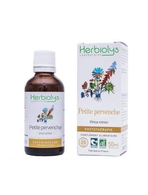 Petite Pervenche Bio - Acouphènes et Mémoire Teinture-mère Vinca minor 50 ml - Herbiolys