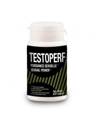TestoPerf - Puissance sexuelle 20 capsules - LaboPhyto