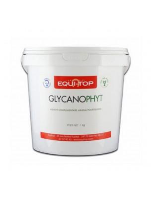 Glycanophyt - Ossature et Articulations des Chevaux 1 kg - Equi-Top