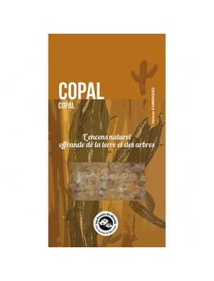 Copal - Résine aromatique 30 g - Les Encens du Monde