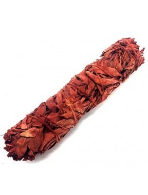 Sauge Blanche Sang de Dragon - Fumigation - Ficelle 40 à 50 g