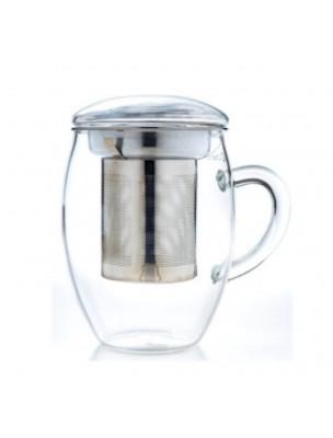 Mug en Verre borosilicate 3 en 1 400ml avec son filtre