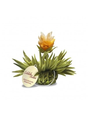 Pearl Fleur de Thé - Thé blanc,  Rose, Jasmin et Arôme Citron