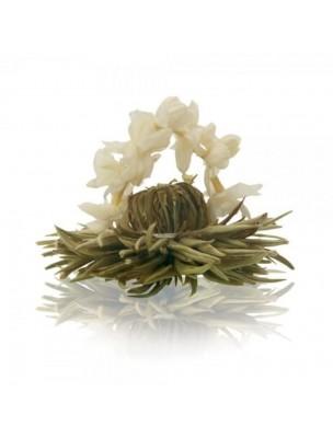 Image de Mariage argenté Fleur de Thé - Thé blanc Jasmin en Arc depuis ▷ Russe vert aux 7 agrumes - Thé plaisir