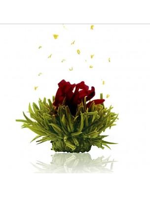 Creano Cerise Fleur de Thé - Thé vert Hibiscus, Sureau et Arôme Cerise