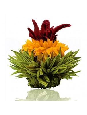 Creano Mangue Fleur de Thé - Thé vert Hibiscus, Souci et Arôme Mangue