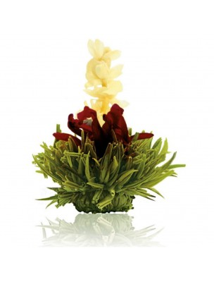 Creano Framboise Fleur de Thé - Thé vert Jasmin, Hibiscus et Arôme Framboise