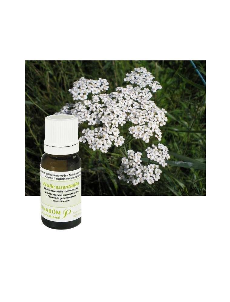 Achillée millefeuille - Huile essentielle d'Achillea millefolium 5 ml - Pranarôm