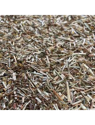Image de Millepertuis Bio - Sommité coupée 100g - Tisane Hypericum perforatum L. depuis ▷ Souci Bio - Pétales 50g - Tisane de Calendula officinalis