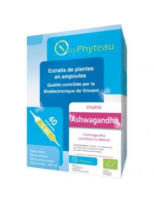 Ashwagandha Bio - Détente et Equilibre mental 40 ampoules - Oxyphyteau