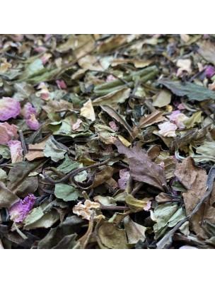 Image de Thé Blanc à la Rose de Damas Bio - Thé Blanc Parfumé 20g depuis Thés blancs de la marque Louis Herboristerie