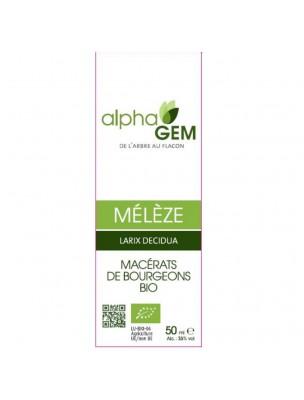 Mélèze Macérat de bourgeons Bio - Larix decidua 50 ml - Alphagem
