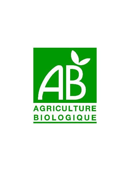 Miel de Châtaignier Bio 500g -  Arômes puissants et boisés, bon pour la circulation sanguine - Ballot-Flurin