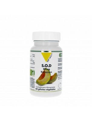 S.O.D. Végétale 20mg Bio - Antioxydant 60 gélules végétales - Vit'all+
