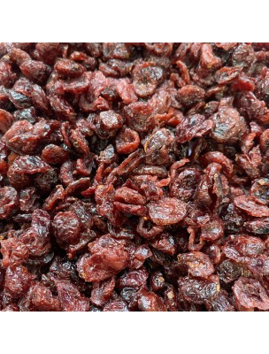 Canneberge Bio - Fruit Moelleux 100g - Tisane de Vaccinium macrocarpon