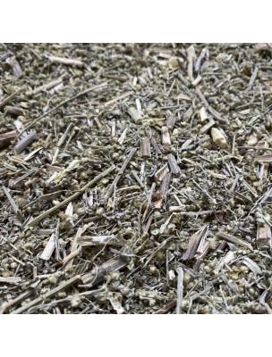 Image de Absinthe - Sommité coupée 100g - Tisane d'Artemisia absinthium depuis Une santé quotidienne naturelle