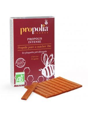 Image de Propolis Bio - Pure à mâcher Plaquette de 10 g - Propolia depuis Acheter Sea Aquacell's - Gourde en Verre 500 ml - CSBS