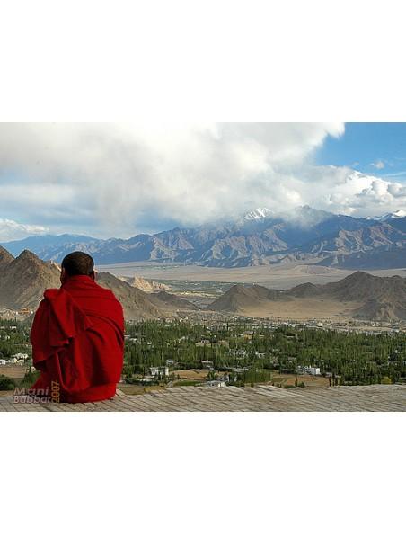 Bouddha Méditation encens tibétains - 16 bâtonnets - Les Encens du Monde