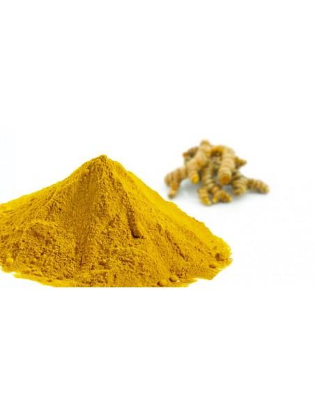 Curcuma Bio - Antioxydant et articulations 120 gélules - Purasana