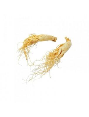 https://www.louis-herboristerie.com/6715-home_default/eleuthrocoque-bio-glules-purasana.jpg