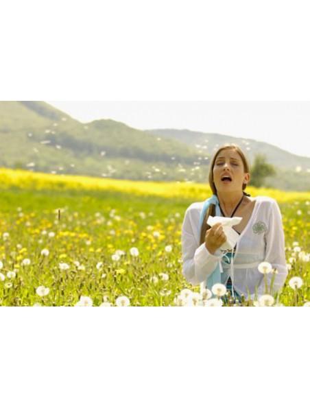 AllarGEM GC01 Bio - Allergies 50 ml - Herbalgem